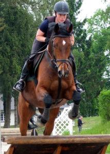 gesundes Pferd im Sprung
