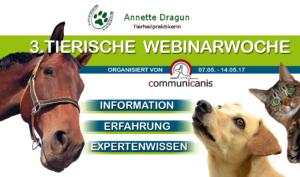 Webinar von Annette Dragun Thema Allergien bei Hunden